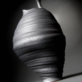 Ceramic by Penny Withers